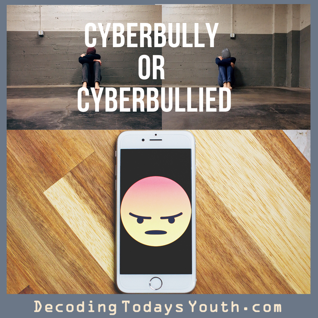 Cyberbullying or Cyberbullied? (Both are bad…)