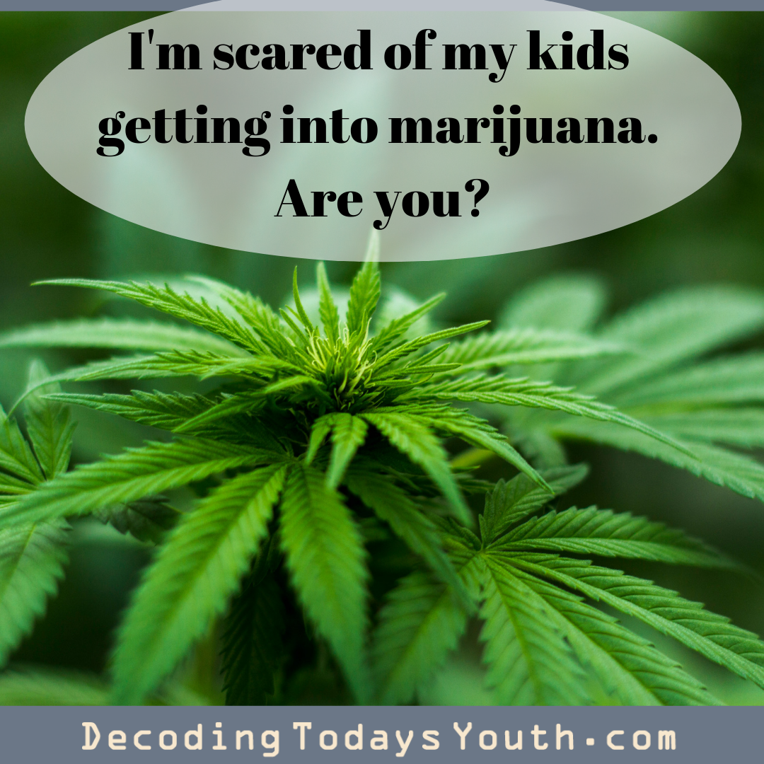 I'm scared of my kids getting into marijuana. You should be too.